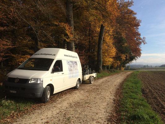 Die huskypost ist auf dem Weg zum Herbsttraining.