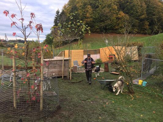 Und da haben wir zu meinem Geburtstag unsere Freundschaftsbäume gepflanzt im Heimeli!