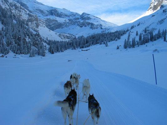 Ein herrlicher Morgen mit Neuschnee und sauberem Trail lädt zum Fahren ein