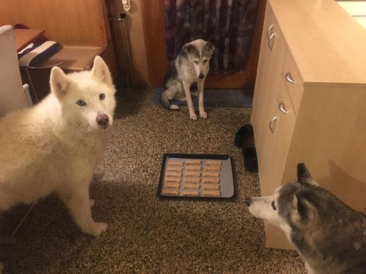 Soo, zum Ruhen lassen auf den kalten Boden, scharf bewacht - und dass mir keiner was klaut, sie sind gezählt, gibt Ice den Tarif durch.