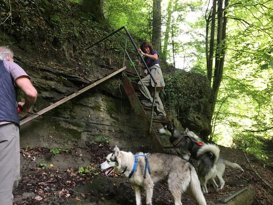 Und plötzlich stehen wir am Berg, buchstäblich, aber Frauchen Evelyn nimmt`s gelassen und klettert los...