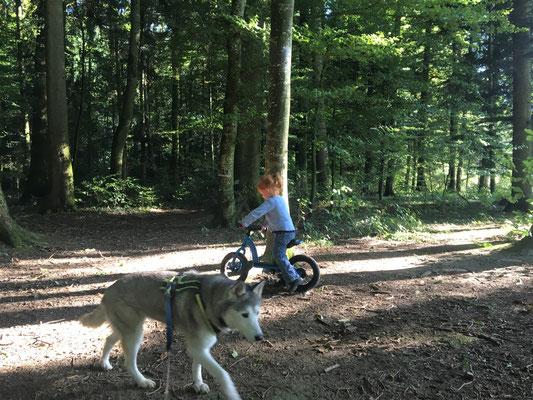 Neben Alina durch Wald...