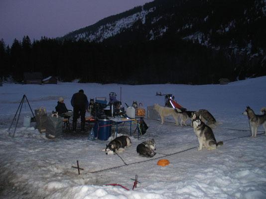 Nachtcamp mit den Husky`s