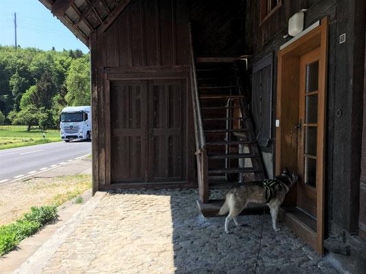 Der Eingang zum Bau - verschlossen und riecht nicht mehr nach uns.