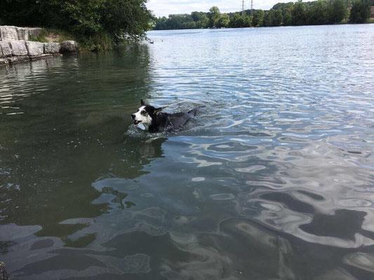 Wenn es dann so in einem richtigen See ist, gehe ich meist alleine. aber weit weg schwimme ich nie, will meine drei Lieben immer im Auge behalten.