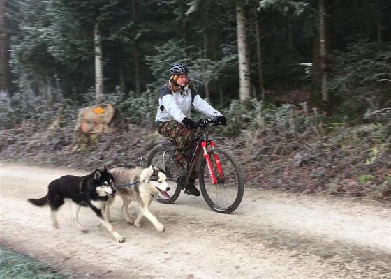 Ich will auf jeden Fall noch Fahrradtraining machen, mit meinem alten, weisen Kumpel Merkur zusammen ist das so herrlich!!! - (Ja ich weiss, meine Nase...)