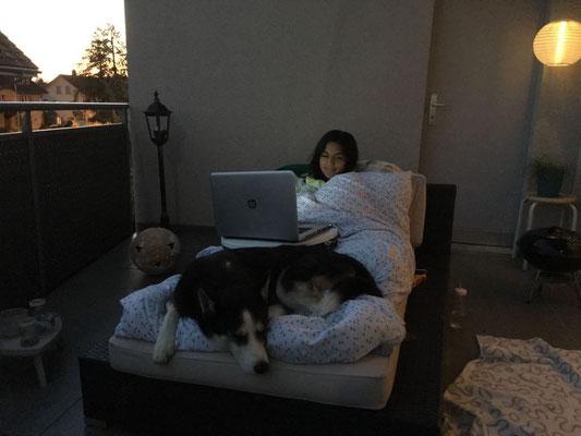 In einer lauen Sommernacht mit Frauchen auf dem Balkon, auf ihr Bett gekuschelt, das liebe ich besonders...