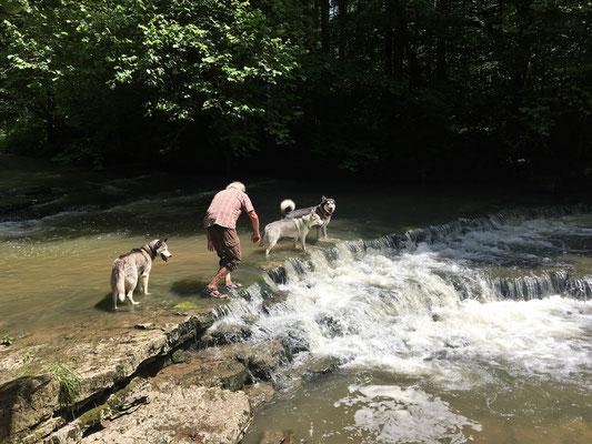 Felix kommt mit uns in Wasser und zeigt uns alle schönen Plätze.