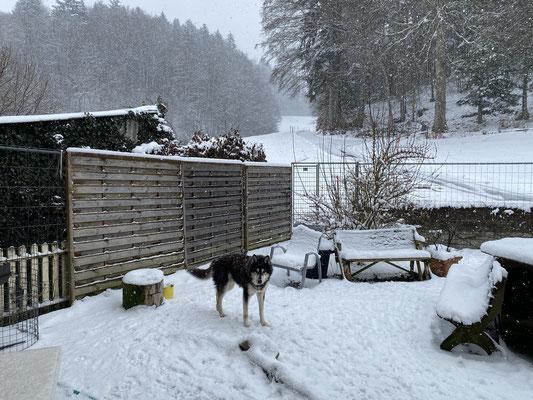 16 Jahre und 74 Tage; und kein bisschen weniger gern im Schnee als gestern