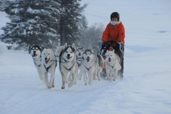 Mit meinen 8 Vier-mal-Vier dem Yukon entlang durch Schnee und Eis (Foto B. Müller)
