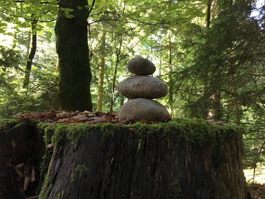 Ein Wegmarker; die Art und Weise wie die Menschen markieren? Kann das sein? Aber wir sehen beinahe auf jedem Baumstrunk irgend so ein Naturkunststück.