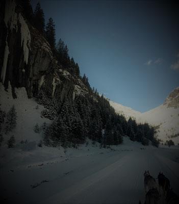 Yukon Tal - und auf einmal ist die Sonne weg, wir sind tief unten in der engen Schlucht, die -40° lassen unsere Ausatmungsluft gefrieren, aber wir sind unbeirrt am Rennen und Ziehen, dem Ziel entgegen.