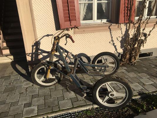 Mit diesem, aus dem Schopf ausgegrabenen 3-Rad-Wagen ein Training machen? Das wäre megatoll! Aber wer würde mir dabei noch helfen?