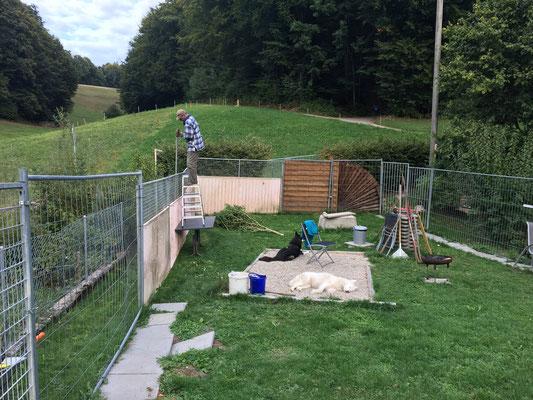 Verankerungsstangen für den Zaun werden eingejagt, nicht ganz nach Suva-Art.