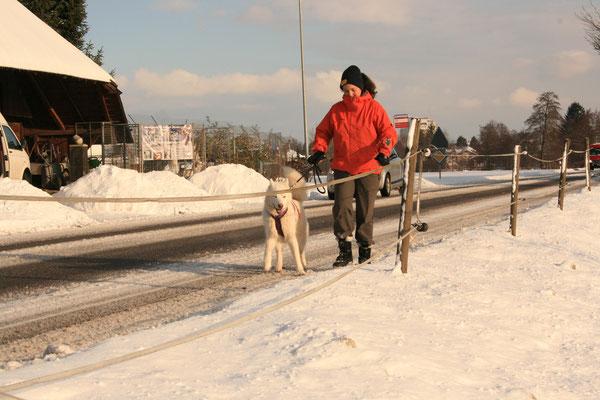 Ein sehr schneereicher Winter zu Hause (Foto C. Fankhauser)