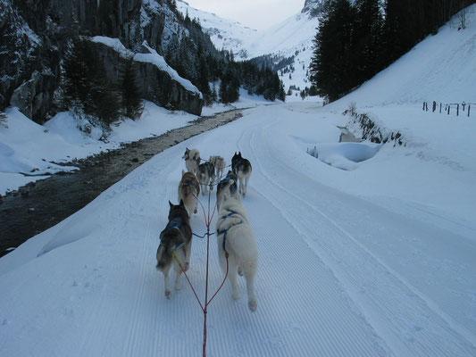 Dalzell Schlucht am Fusse des Rainy Pass in Alaska? Nein, Urnerboden Switzerland