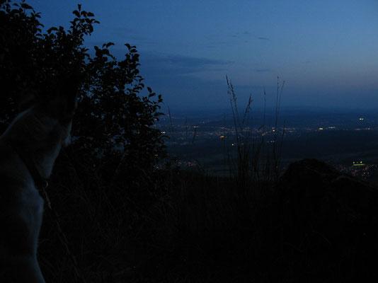 ...und schönem Ausblick ins Tal geniessen