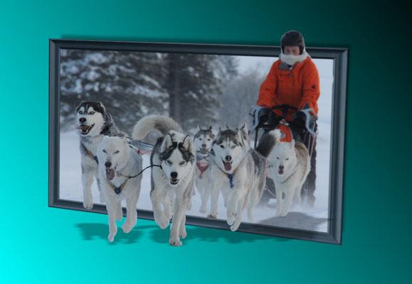 """Die Huskypost von Oberönz""  Noemi Zarbo  (Foto Huskypost)"