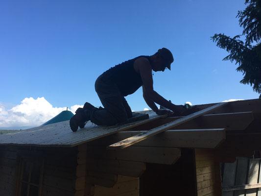 Aber schon ist Herrchen auf das Dach geklettert und löst die ersten Bretter.