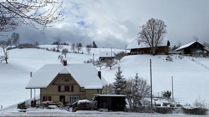 Winter, 25.1.2021