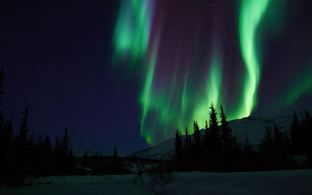 Das Tüpfelchen sei dann aber das Nordlicht gewesen, dem sie einmal vom Schlafsack aus hätten zusehen können, die Aurora Borealis.