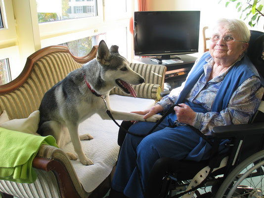 Als Therapiehund glückliche Momente ins Altersheim bringen