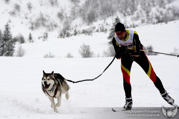 Skijöring mit dem einzigen Freund