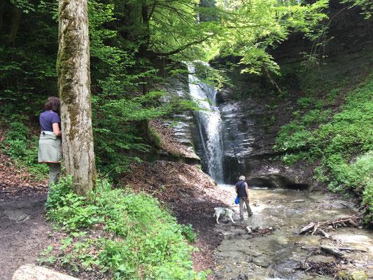 Jetzt kommt der Fall; aber nicht, dass wir etwa vorher hochmütig gewesen wären. Und darum ist es auch ein herrlicher Wasserfall.