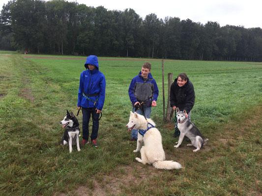 """Gruppe 2 besteht aus den Team`s Arizona und Remo, Blizzard mit Yannik und Rainey mit Lars, begleitet von Doghändlerin Noemi. Schaut, wie sie alle brav """"sitz"""" machen, die Kumpels."""