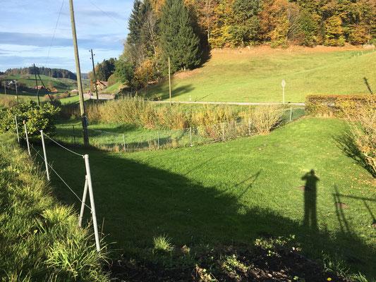 Das Weidli hinter dem Haus,