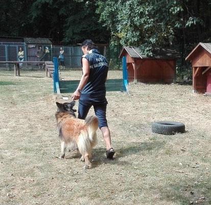 Moni mit Fanell beim Dog dancing