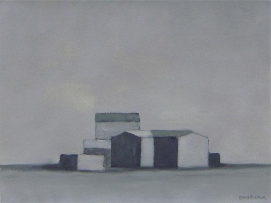 R6 / 2010