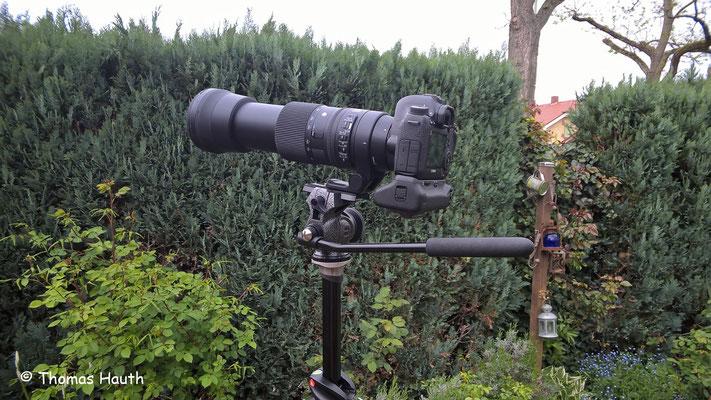 Hier die Kamera mit Batteriegriff und Sigma Contemporary 150-600mm. Alles steht stabil und sehr sicher.