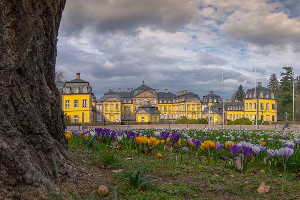 Residenzschloss Arolsen - Bad Arolsen 2019