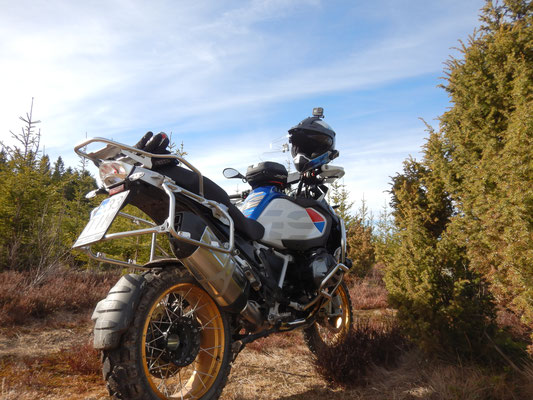 Enduro riding. Forrest trials leads you to the nicest places very often. Also in love with.