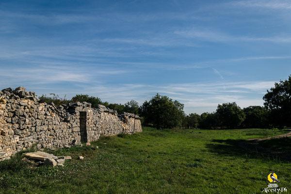 Da questa foto sin può notare la presenza dei paralupi, costituito da una serie continua di lastre di pietra infisse orizzontalmente nella muratura, il tutto per impedire l'accesso ad animali predatori capaci di arrampicarsi, come volpi, lupi e faine