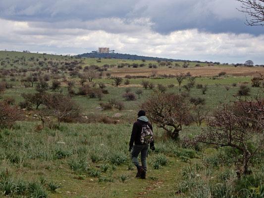 Sui sentieri alla conquista della corona di pietra ottagonale,  Castel del Monte 👑