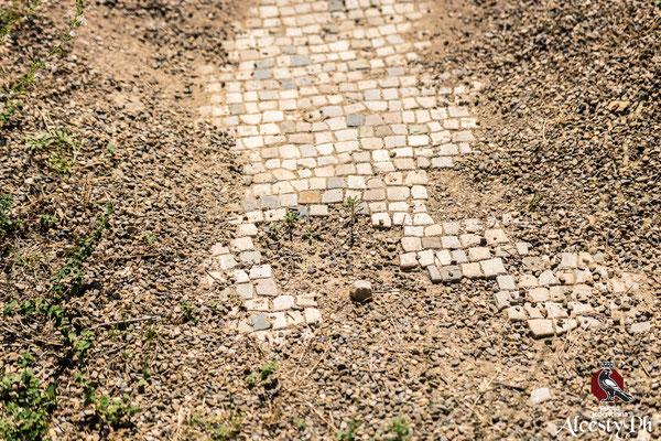 Il cortile e il corridoio d'accesso del Macellum erano pavimentati con un mosaico di tessere bianche, parzialmente conservato