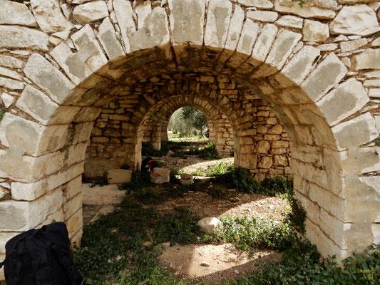 I resti di un palmento. Tipica antica struttura dell'Italia meridionale con vasche larghe e poco profonde per la #pigiatura e alla fermentazione dei mosti. 🍇
