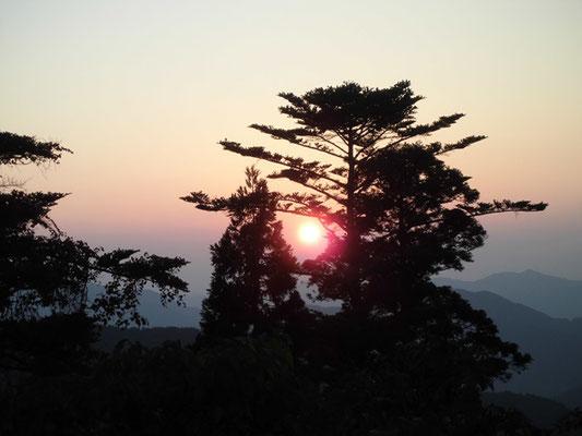 大門からの夕陽
