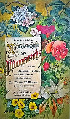 Das älteste Pflanzenbuch meiner Großmutter von 1887              © I. Geusen 2015