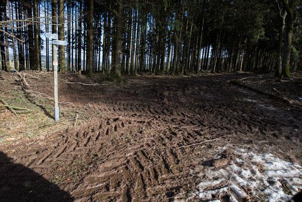 Die Wege waren leider von Landmaschinen komplett zerstört, nicht nur hier!  Traumpfad, Eifel, Mosel, Rhein, Wandern, Natur, Fotografie, Traumpfade,