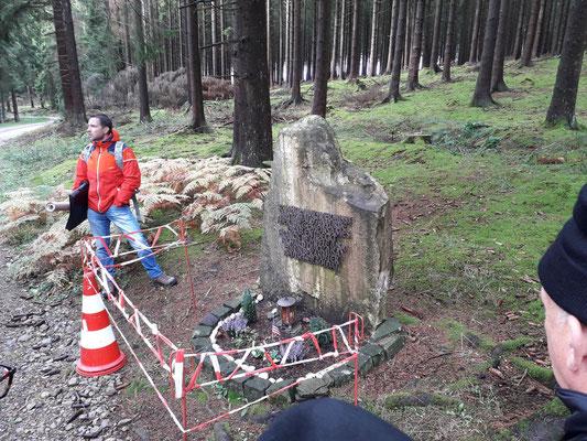 Hurtgen Forest 2019