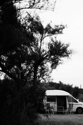 Alter VW Bus auf der Il de Re hinter Dünen bei Phare des Baleines