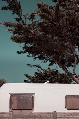 Alter Wohnwagen unter Pinienbäumen auf der Il de Re