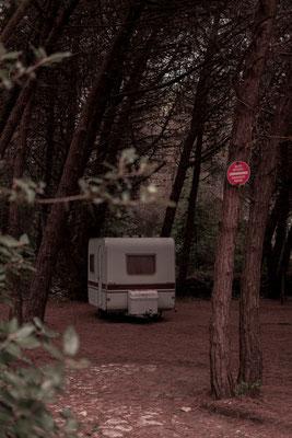 Alter Wohnwagen im Pinienwald auf der Il de Re