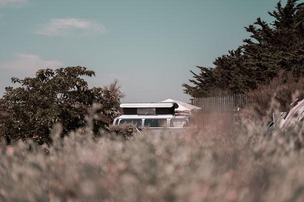 Alter VW Bus in silberner Lackierung auf dem Campingplatz Il de Re.