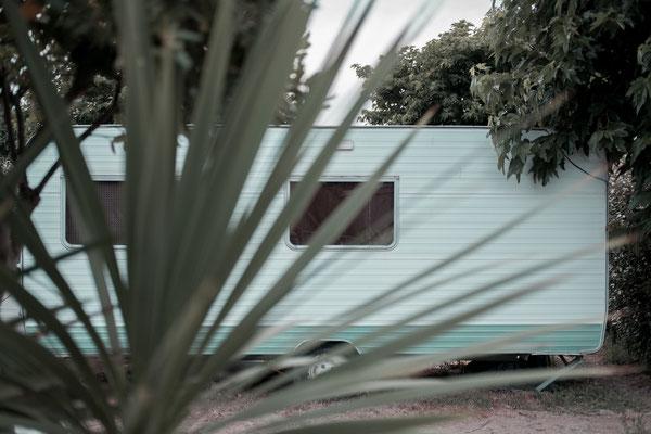 Campingplatz auf der Il de Re bei Phare des Baleines - Travel Photography zu Corona Zeiten. Wohnwagen vor einer Palme.