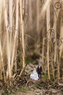 Brautpaar Miniatur im Kornfeld
