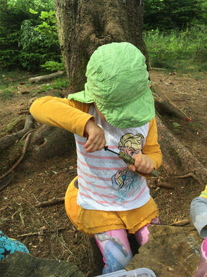 Bohren im Wald Waldtagesfamilie
